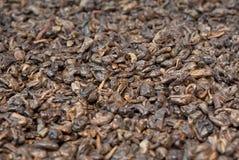 Priorità bassa del tè della polvere nera Fotografie Stock