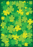 Priorità bassa dell'acetosella dei quattro fogli per il giorno di St.Patricks   Fotografie Stock Libere da Diritti