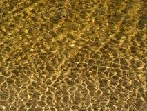 Priorità bassa dell'acqua di Goldish Immagini Stock Libere da Diritti