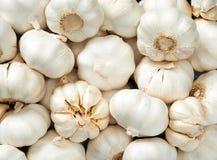 Priorità bassa dell'aglio Immagini Stock Libere da Diritti