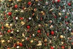 Priorità bassa dell'albero di Natale Fotografie Stock Libere da Diritti
