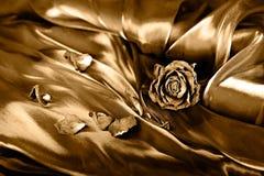 Priorità bassa dell'annata: Asciughi di rosa su raso Fotografie Stock