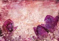 Priorità bassa dell'annata con i tulipani Fotografia Stock Libera da Diritti