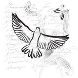 Priorità bassa dell'annata con il piccione Fotografie Stock Libere da Diritti