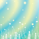 Priorità bassa dell'erba di estate illustrazione vettoriale