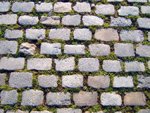 Priorità bassa dell'erba e della pietra Fotografie Stock