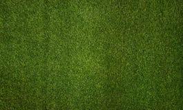 Priorità bassa dell'erba Struttura dell'erba fotografie stock libere da diritti