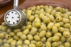 Priorità bassa dell'oliva verde Fotografia Stock