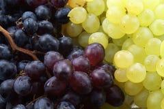 Priorità bassa dell'uva Immagine Stock Libera da Diritti