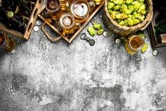 Priorità bassa della birra Birra fresca con gli ingredienti fotografie stock