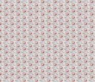 Priorità bassa della carta da parati del fiore Immagini Stock