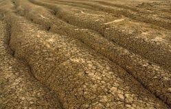 Priorità bassa della crepa di siccità Fotografia Stock