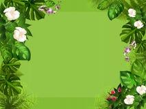 Priorità bassa della foresta con i fiori bianchi Fotografia Stock