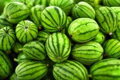 Priorità bassa della frutta Angurie organiche nel mercato degli agricoltori Nutriti Fotografia Stock