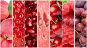Priorità bassa della frutta fresca Immagine Stock