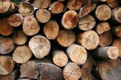 Priorità bassa della legna da ardere Fotografia Stock Libera da Diritti