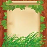 Priorità bassa della natura con i fogli, l'erba ed il documento Fotografie Stock