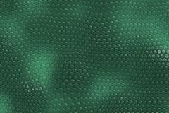 Priorità bassa della pelle di serpente Fotografia Stock