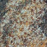Priorità bassa della roccia con le inclusioni del granato Fotografie Stock Libere da Diritti