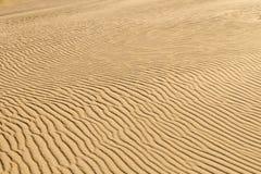 Priorità bassa della sabbia del deserto fotografie stock libere da diritti