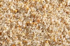Priorità bassa della sabbia della spiaggia Immagine Stock Libera da Diritti