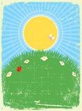 Priorità bassa della scheda dell'annata con il paesaggio di estate Immagini Stock Libere da Diritti
