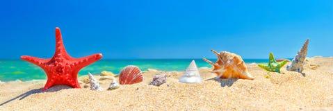 Priorità bassa della spiaggia di estate fotografia stock