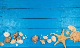 Priorità bassa della spiaggia di estate Immagini Stock