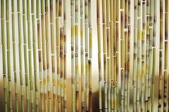 Priorità bassa della tenda di bambù Immagini Stock Libere da Diritti