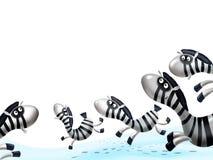 Priorità bassa della zebra illustrazione di stock