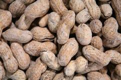 Priorità bassa delle arachidi fotografie stock libere da diritti