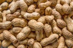 Priorità bassa delle arachidi Immagini Stock Libere da Diritti