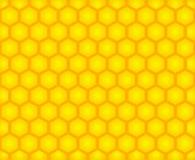 Priorità bassa delle cellule del miele Fotografia Stock