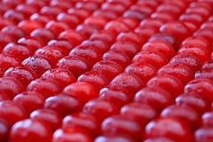 Priorità bassa delle ciliege Fotografia Stock Libera da Diritti