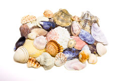 Priorità bassa delle coperture del mare Fotografia Stock Libera da Diritti