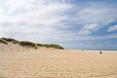 Priorità bassa delle dune e della spiaggia Fotografie Stock