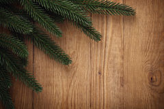 Priorità bassa delle filiali di albero dell'abete Fotografia Stock Libera da Diritti