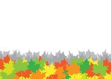 Priorità bassa delle foglie di acero di autunno Immagine Stock