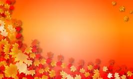 Priorità bassa delle foglie di acero di autunno Fotografia Stock Libera da Diritti