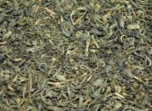 Priorità bassa delle foglie di tè verdi Immagini Stock Libere da Diritti