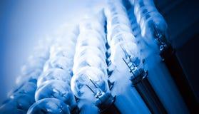 Priorità bassa delle lampadine Fotografia Stock