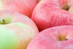 Priorità bassa delle mele Fotografia Stock