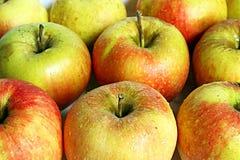 Priorità bassa delle mele Fotografia Stock Libera da Diritti
