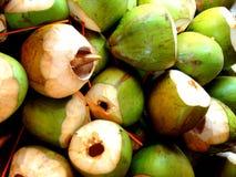 Priorità bassa delle noci di cocco Fotografia Stock