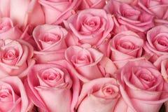 Priorità bassa delle rose immagine stock