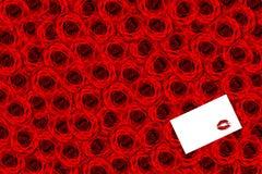 Priorità bassa delle rose Immagine Stock Libera da Diritti