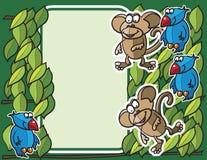 Priorità bassa delle scimmie e degli uccelli Immagine Stock Libera da Diritti