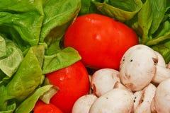 Priorità bassa delle verdure Immagine Stock