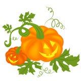 Priorità bassa delle zucche di Halloween Fotografie Stock