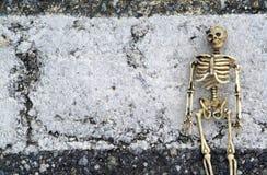 Priorità bassa dello scheletro di Grunge Fotografia Stock Libera da Diritti